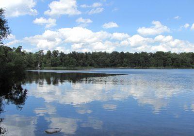 Sommerwolken spiegeln sich im See